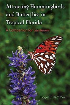Florida Landscaping, Florida Gardening, Tropical Landscaping, Tropical Garden, Landscaping Ideas, Garden Landscaping, Small Backyard Gardens, Backyard Garden Design, Small Gardens