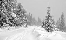#cestovani #priroda #snih #zima #les #krajina #vylet #turistika #strom Free Pictures, Free Images, Winter Mountain, Tourism, Mountains, Landscape, Nature, Outdoor, Turismo