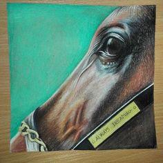 #alwaysdreaming#racehorse#cretacolor#drawing#art🎨#preakness  @preaknessstakes   @kentuckyderby   @alwaysdreamingcolt