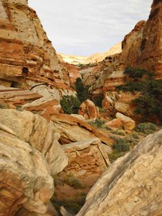 Chimney Rock, Cohab Canyon, and Fredmont River Trail, Capitol Reef National Park Capitol Reef National Park, National Parks, River Trail, Acre, Utah, Grand Canyon, Choices, United States, Rock