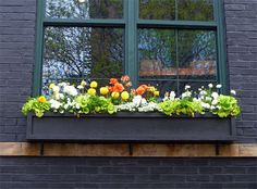 Simple window boxes