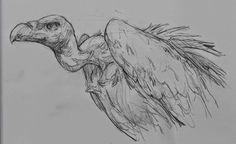 Arte Realista de Takiguthi: desenho de animal