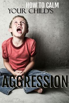 Do you have a toddler who is experiencing the terrible twos…or threes? …an older child whose behavior is getting to be unmanageable? Not sure where to start at bringing peace back into your home? Here are some tips on how to calm your child's aggression.
