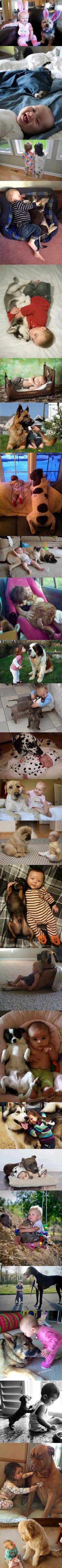 fotos hijo mascota