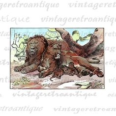 Digital Graphic Antique Lion Family Download Printable Color