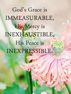 ❤❤❤ God's Grace is immeasurable, HIs mercy is inexhaustible, His peace is inexpressible.