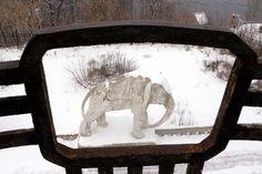 Samara, Konstantin Golovkin's Villa (Cottage with elephants), project of Golovkin and architect V. Samara, Elephants, Villa, Cottage, Architecture, Projects, Arquitetura, Log Projects, Blue Prints