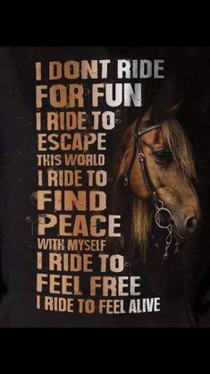 funny horse memes so true & funny horse memes - funny horse memes hilarious - funny horse memes equestrian - funny horse memes videos - funny horse memes humor - funny horse memes so true - funny horse memes western - funny horse memes jokes Rodeo Quotes, Equine Quotes, Cowboy Quotes, Cowgirl Quote, Horse Sayings, Hunting Quotes, Equestrian Funny, Equestrian Quotes, Western Horse Quotes