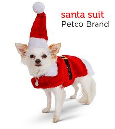 Make a holiday fashion statement in this Santa Suit from Petco's Holiday Gift Guide.