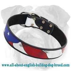Painted #Leather #Collar For #English #Bulldogs $54.80 | www.all-about-english-bulldog-dog-breed.com