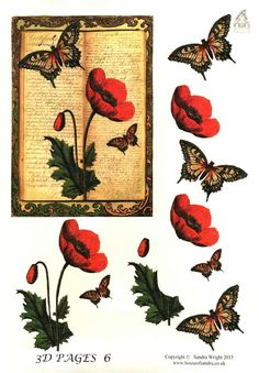 The House of Zandra decoupage - 3D Pages 6 - Poppy and butterfly