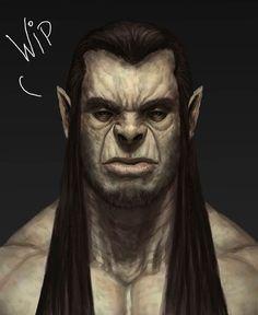 m Half Orc Monk Barbarian portrait