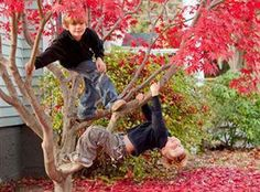 Top 10 Fun #Fall Activities to Keep Your #Family Happy and #Healthy  www.mommylivingthelifeofriley.com