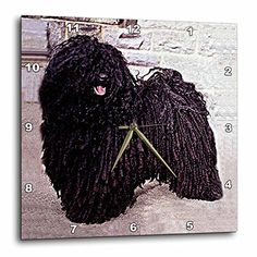 Dogs Puli  Puli  10x10 Wall Clock dpp_252_1 ** You can get additional details at the image link.
