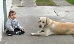 Nádherné VIDEO. Rozkošný 3-ročný chlapec s Downovým syndrómom a jeho Labrador ako zdroj bezpodmienečnej lásky a priateľstva.