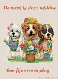 Gifs Bon Week-end Page 9 Bon Weekend, Summer Gif, Les Gifs, Heat Transfer, Cute Shirts, Beagle, Scooby Doo, Screen Printing, Whimsical