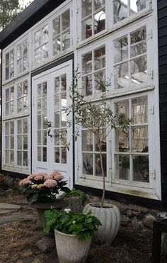 Old Window Greenhouse, Greenhouse Shed, Glass House Garden, Home And Garden, Conservatory Kitchen, Inside Garden, Small Cottages, Little Houses, Dream Garden