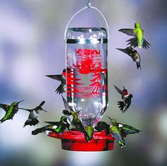Use the gauge on the the side of the feeder to measure the nectar and calculate how many hummers came to call! at Duncraft