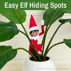 Easy Elf Hiding Spots   Elf on the Shelf Hiding Places   Where to Hide the Elf Christmas Elf Doll, Christmas In July, Christmas Ideas, Hiding Spots, Hiding Places, The Elf, Elf On The Shelf, Elves At Play, Play Stick