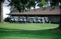 Baby Boomer Retirement: Golf Carts vs Golf Cars for Retirees - Which is best for your needs?
