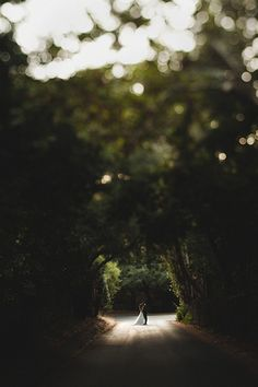 The trees create a tunnel in this gorgeous outdoor wedding photo of the bride and groom
