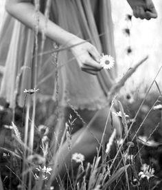 """ᵩ""""The words 'far, far away' had always a strange charm."""" ~Lord Alfred Tennyson"""