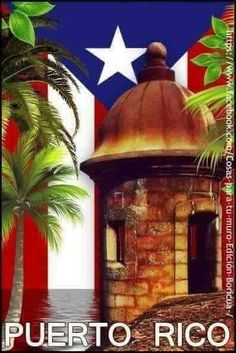 Puerto Rican Memes, Puerto Rican Music, Puerto Rican Flag, Puerto Rico Tattoo, Pr Flag, Puerto Rico Pictures, Puerto Rican Culture, San Juan Puerto Rico, Jesus Pictures
