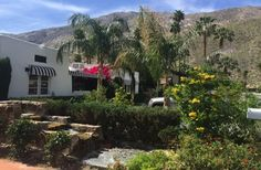 Amin Casa 529 West Arenas Road, Palm Springs, CA  92262 Nelson is charming - travels on Seabourn, too.