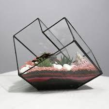 Resultado de imagen de флорариум куб