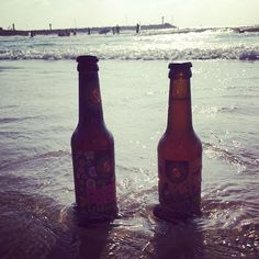 #beer #bier #schoppebräu #berlin #since2001 #flowerpower #sommermärchen #sunset #beach #yolo #afterwork #chilling #craftbeer #craftbrew