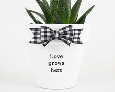 Modern personalized eco-friendly plant pots & by ChickadeePots Thank You Teacher Gifts, Teacher Christmas Gifts, Teacher Appreciation Gifts, Hydrangea Potted, Potted Plants, Hydrangeas, Succulent Pots, Plant Pots, Gifts For Family