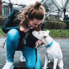 Hoe meer ik leer over mensen, hoe meer ik van honden ga houden Snow, Dogs, Pet Dogs, Doggies, Dog, Human Eye