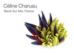 Polymer clay brooch by Céline Charuau (Grisbleu).