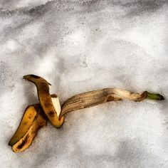 #WonderWatch 2015-29 Snowbank Banana #Why? #Rejected