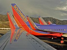 Photo of Southwest - FlightAware Airline Logo, Airline Travel, Aviation Industry, Aviation Art, Float Plane, Airplane Photography, Cargo Aircraft, Best Airlines, Southwest Airlines