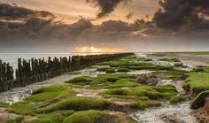 Het Friese Wad | Landschap foto van chris-hornung | Zoom.nl