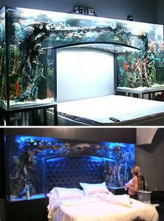 (Images via pixmag, sweetandlowshow) This custom bed aquarium is surely something to behold. There are few things that would be as relaxing as staring up into a gently lit aquarium while drifting off to sleep. Home Aquarium, Aquarium Design, Aquarium Fish Tank, Aquarium Stand, Aquarium Ideas, Fish Tank Bed, Cool Fish Tanks, Amazing Fish Tanks, Amazing Aquariums