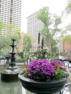 Madison Square Park, New York City. October 2, 2014.