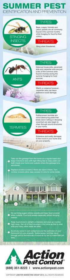 Summer pest infographic!   http://www.actionpest.com/blog/post/summer-pest-identification-and-prevention