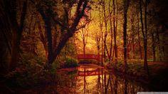 Wallpapers for Desktop: bridge picture (Ina Cook 1920x1080)