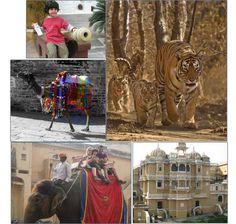 Rajasthan Family Tour