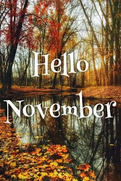 Hello November 7 weigh ins until xmas. I've been off for midterm break. Didnt get to a group because I was out of the. Hallo November, Welcome November, Sweet November, November Month, New Month, Seasons Months, Days And Months, Months In A Year, Four Seasons