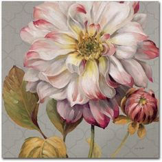 Trademark Fine Art Classically beautiful II Canvas Art by Lisa Audit, Size: 14 x 14, Multicolor