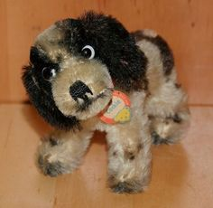 Alter Original Steiff Hund Cocker Spaniel Cockie mit KS***