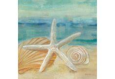 Metaverse Art Horizon Shells I Gallery Wrapped Canvas Wall Art - JCPenney Nautical Wall Decor, Nautical Art, Decoupage, Seashell Art, Print Artist, Art Print, Beach Scenes, Beach Art, Canvas Artwork