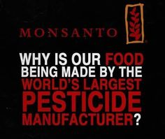 Monsanto | Why is our food being made by the world's largest PESTICIDE manufacturer?