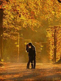 Поцелуй под покровом осени (пара,любовь,осень,природа,дождь) - анимация на телефон №1284908