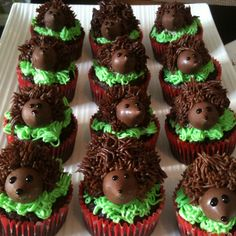 Hedgehogs cupcakes made with Hershey's kisses for the head, black icing for the eyes & nose and use a Wilton fur/grass tip 233 to pipe on the chocolate frosting spikes!