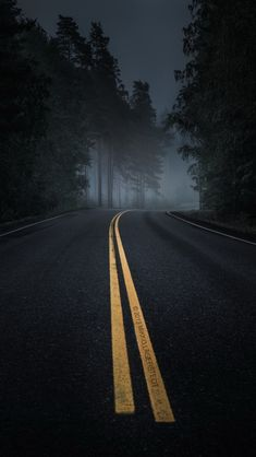 Dark Road Forest Night Mood