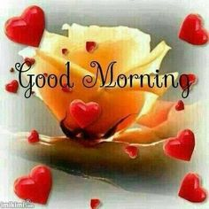 Good Morning have a great day.